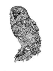owl zentangle