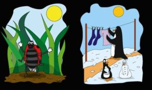 Lady bug and Penguins