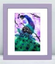 framed peacock