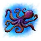 Octopus Zentangle