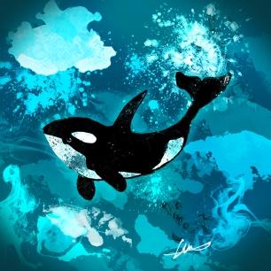 Killer whale lr Hunter Higgins Illustration