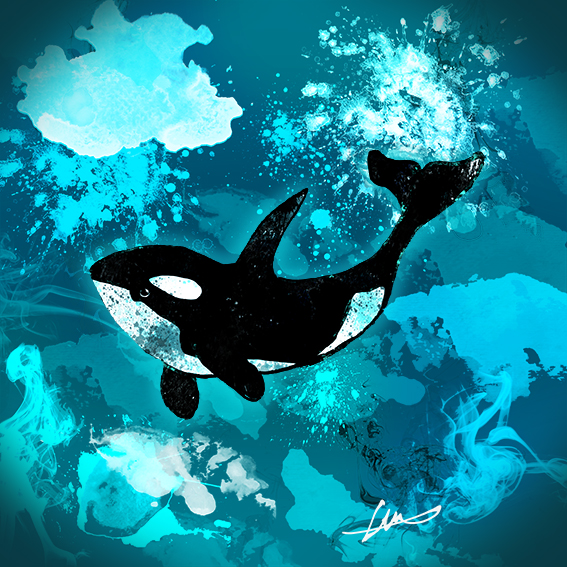 Killer whale lr Hunter Higgins Illustration