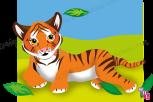 tiger rolling copy